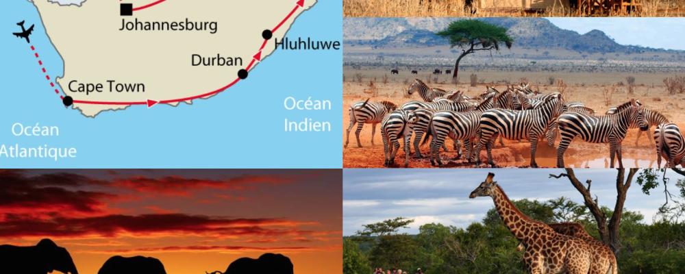 UEJF Vacances : Afrique du Sud